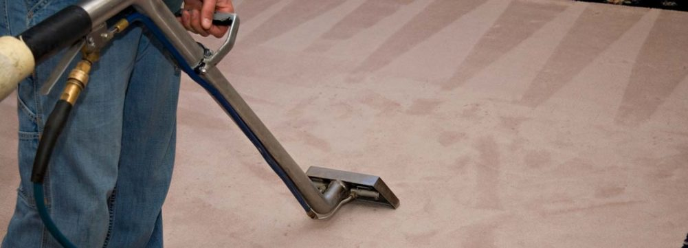 Photo of a regular steam carpet cleaning wand